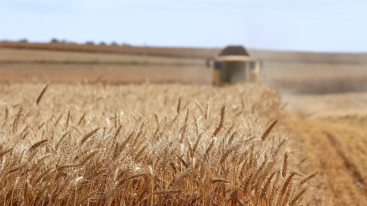 Attrezzature ed Accessori per l'agricoltura BIO